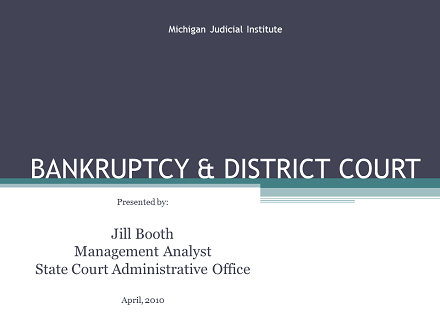 Bankruptcy & District Court April 2010