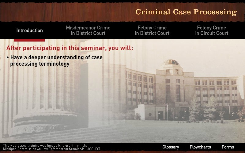 Criminal Case Processing